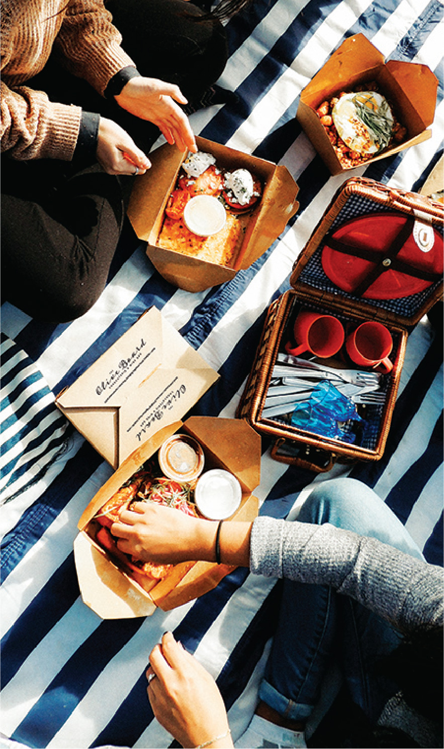 Picnic with takeout boxes